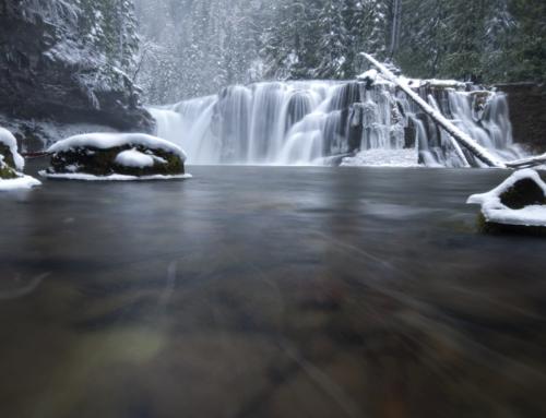 """Winterzeit ist """"Wasser-Zeit"""""""